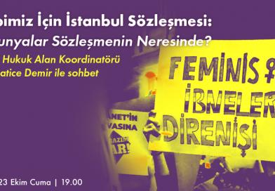Hepimiz için İstanbul Sözleşmesi: Lubunyalar Sözleşmenin Neresinde?